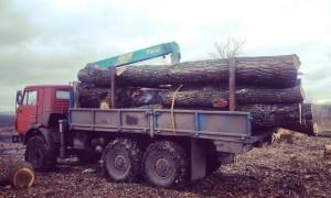 Эвакуатор в городе Шебекино Илья 24 ч. — цена от 800 руб